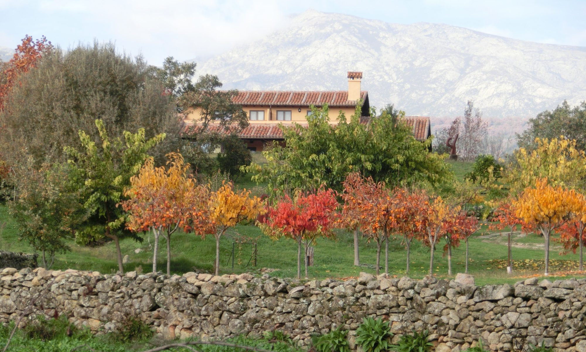 Finca La Herrería Casa Rural